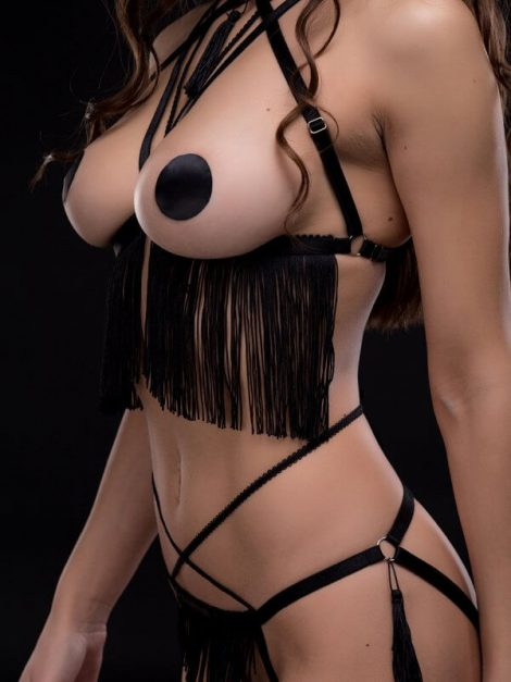 night_of_enticements_harness
